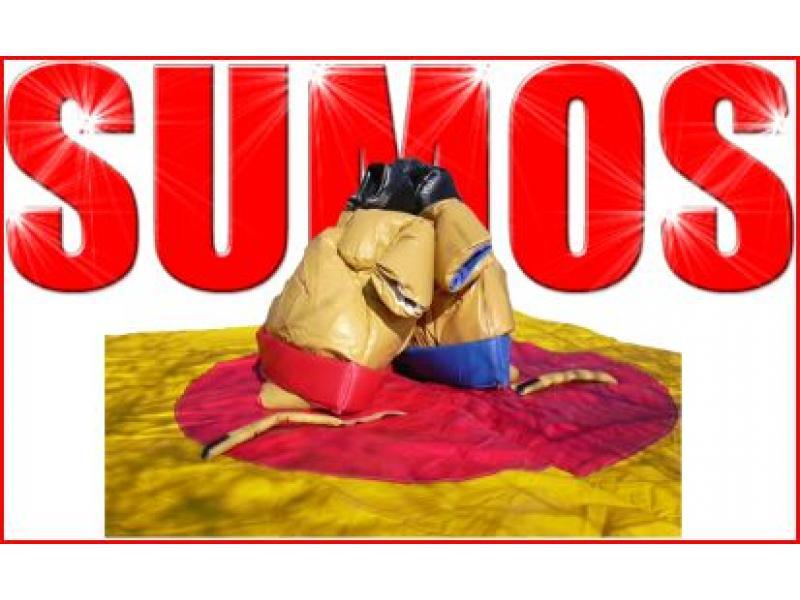 LES SUMOS ADULTES - 1